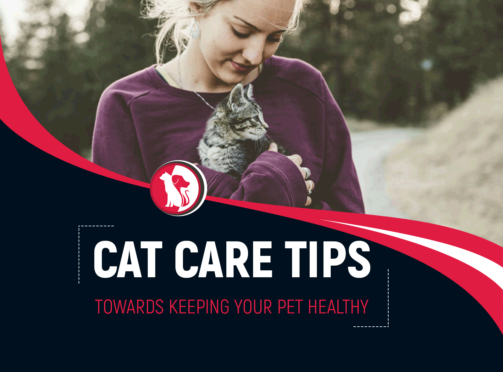 Basic Cat Care Tips Towards Keeping Your Pet Healthy And Happy