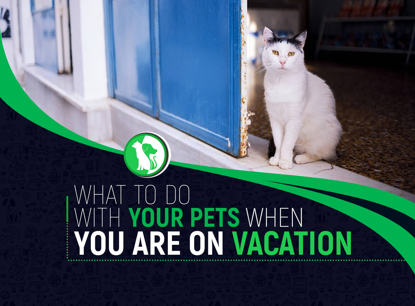 What to Do With Your Pets When You Are on Vacation