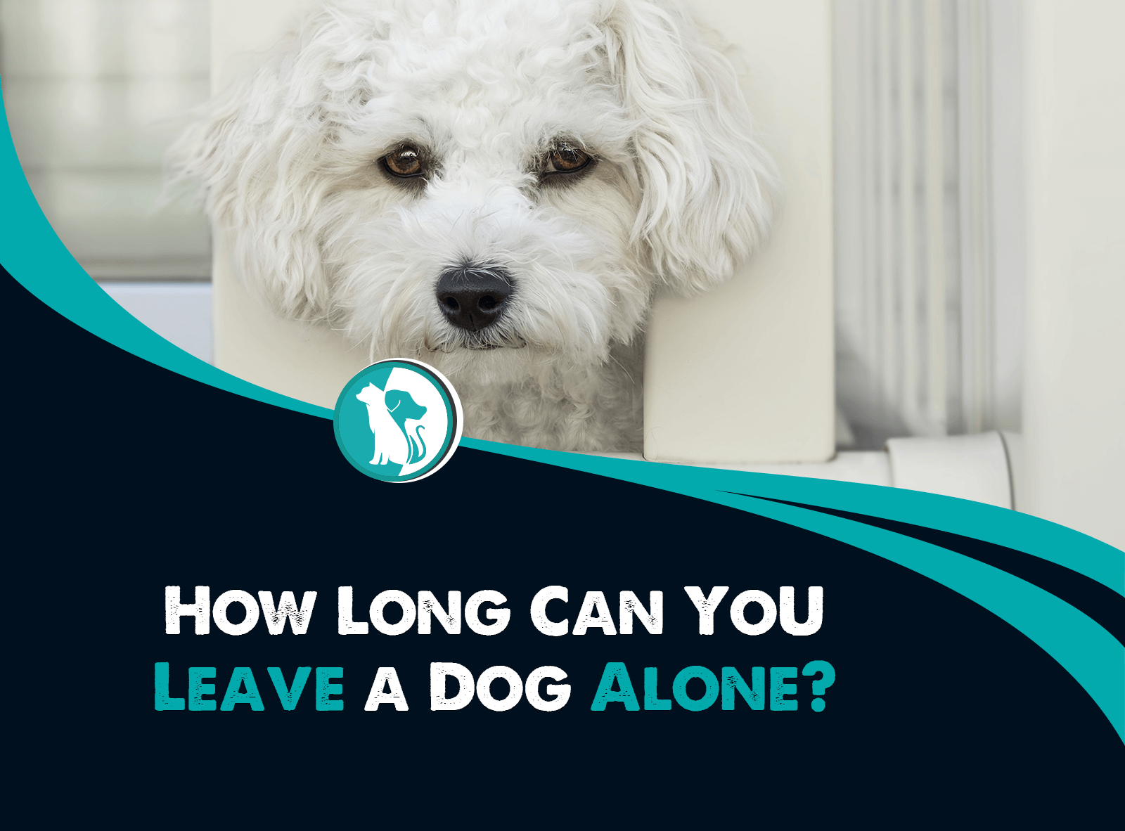 How Long Can You Leave a Dog Alone?