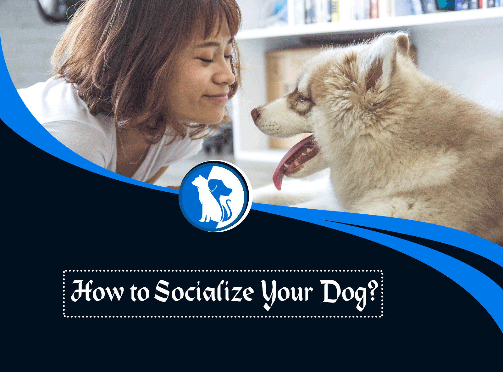 How to Socialize Your Dog?