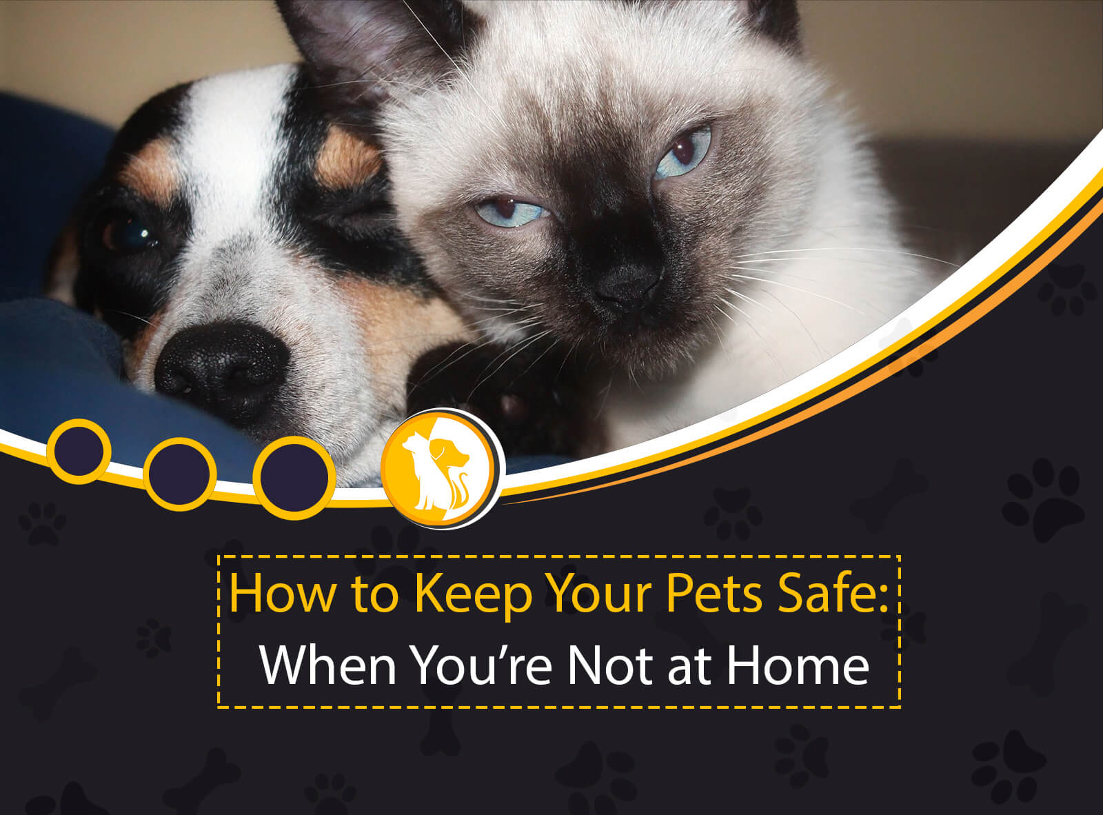 How to Keep Your Pets Safe: When You're Not at Home