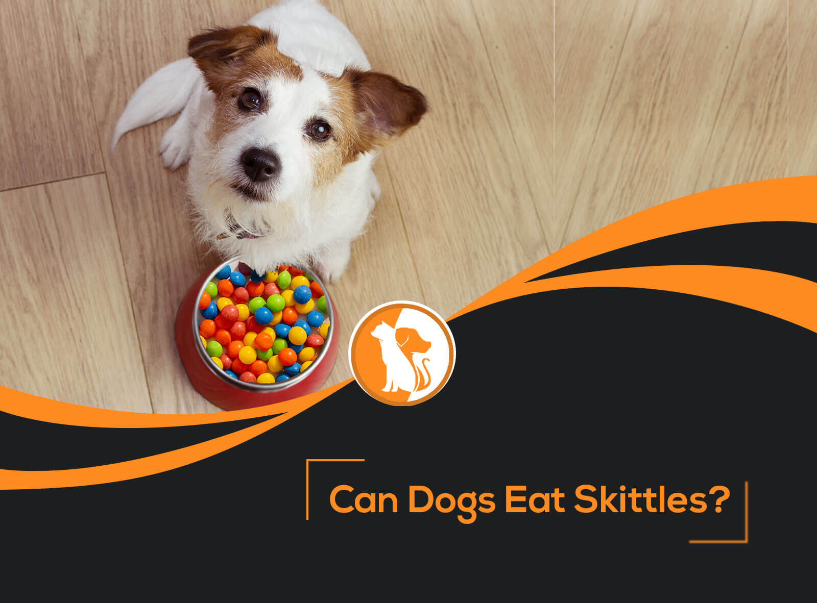 Can Dogs Eat Skittles?